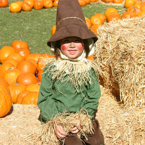 18th Annual Pumpkin Festival Hosted By Kidspace